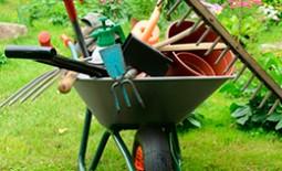 «Великолепная семерка» для сада: инструменты, без которых не обойтись на участке