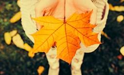 Опавшее «золото»: 8 идей использования осенних листьев