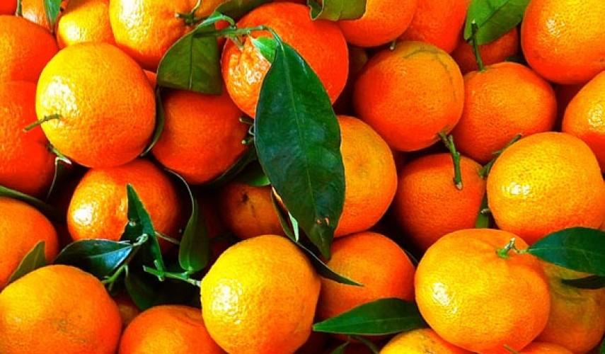 мандарин и клементин