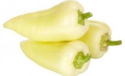 Сладкий перец «Белоснежка» — легкий в выращивании и вкусный на столе