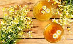 Чай из ромашки: состав, положительное и отрицательное влияние на организм