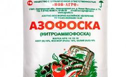 Удобрение Азофоска – незаменимый помощник в огороде