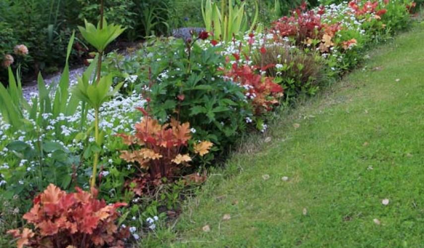 Рабатки на садовом участке