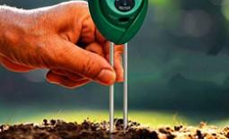 Известкование почвы: определение кислотности грунта, нормы внесения извести, оптимальные сроки, технология процесса