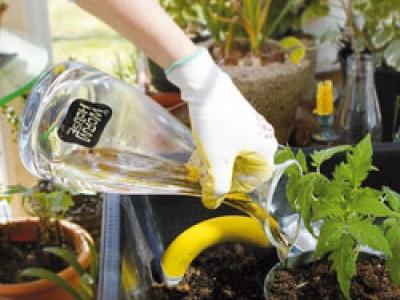 Биогумус – универсальное удобрение для рассады: описание, характеристики, инструкция, отзывы садоводов