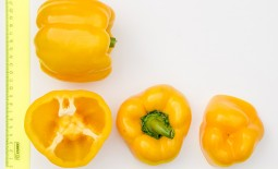 Перец Тавиньяно: все о выращивании кубовидного сорта