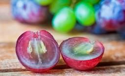 Можно ли есть виноград с косточками взрослым и детям? Полезные и негативные свойства продукта