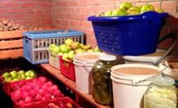 Погреб для хранения овощей и фруктов: правильная обработка и дезинфекция