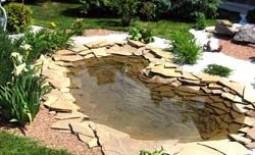Обустраиваем дачный участок: декоративный водоем своими руками