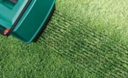 Что такое скарификация газона, и когда лучше ее проводить