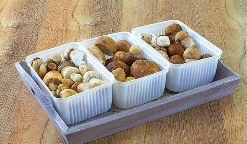 заготовки из белых грибов