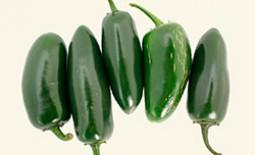 Перец под названием халапеньо – незаменимый ингредиент в мексиканской кухне