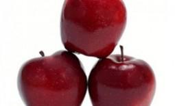 Популярные сорта зимних или поздних яблонь
