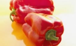 Перец «Толстый барон»: аристократ среди овощей