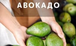 Выбираем авокадо: как определить его спелость и дать дозреть в домашних условиях
