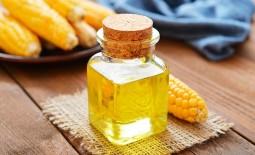 Кукурузное масло: какую пользу приносит организму, противопоказания, нестандартные варианты использования