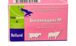 Биомицин — мощный антибиотик для ветеринарии