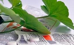 Янтарная кислота: особенности применения для горшечных растений, дозировка и отзывы