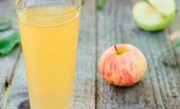 Что нужно знать о заготовке соков из овощей и фруктов на зиму. Подробные рецепты и советы