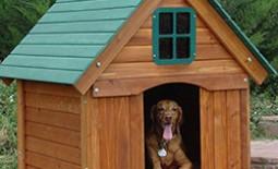 Надежная будка для собаки: как соорудить жилище для питомца своими руками