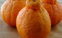 Как называется и выглядит гибрид апельсина и мандарина