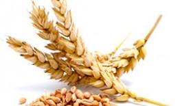 Самодельная мельница для зерна: простая схема сборки