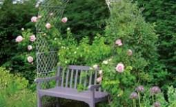 Красота в саду своими руками – опоры для вьющихся растений