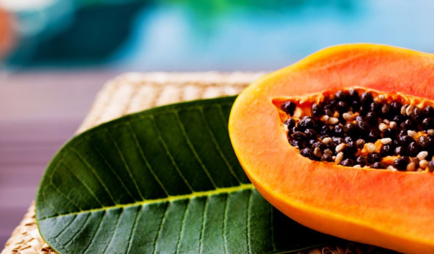 выращивание папайи