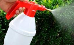 Ручной, бензиновый или аккумуляторный садовый опрыскиватель: какой лучше выбрать