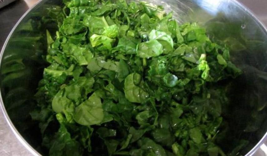 заготовка шпината на зиму