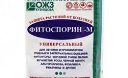 Фитоспорин и его эффективность для клубники. Инструкция, правила применения, отзывы дачников
