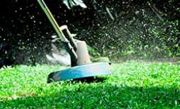 Как и когда стричь газон перед зимним сезоном
