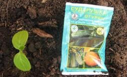 Удобрение Сударушка – универсальная подкормка для садово-огородных культур