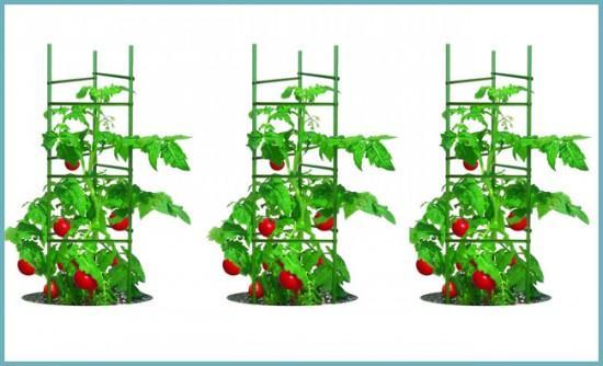 пластиковая опора для томатов