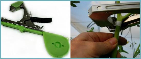 автоматизация подвязки помидоров в теплице