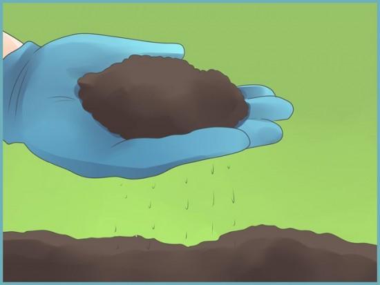 подготовка почвы для выращивания перца