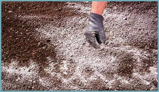 доломитовая мука для понижения кислотности почвы
