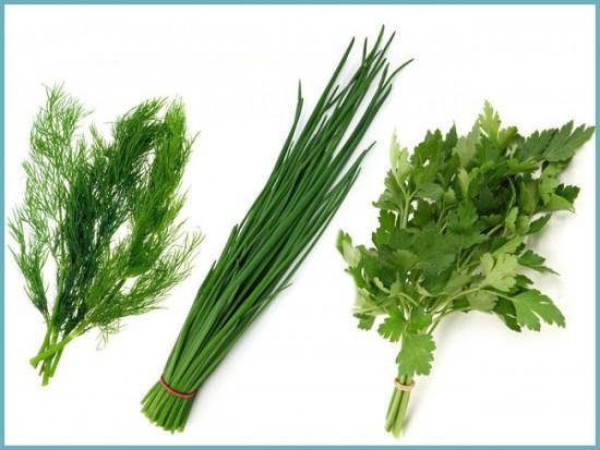 какую зелень выращивать на продажу