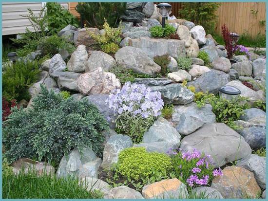 какие камни подойдут для альпинария