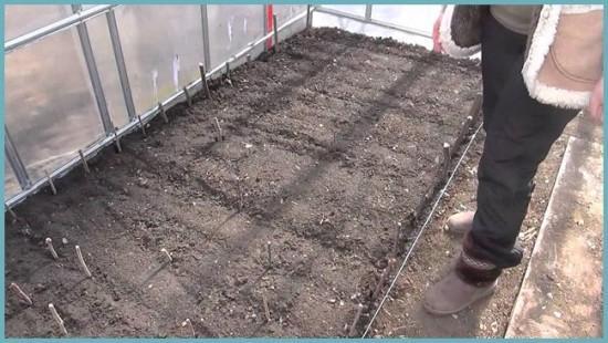 подготовка грунта для томата