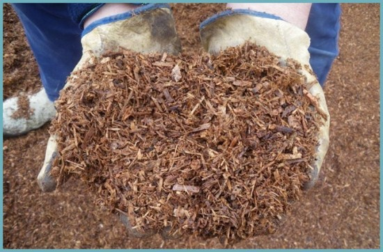 мульчирование грунта в теплице