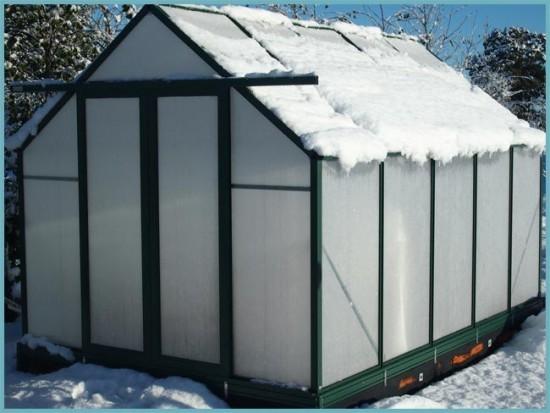 теплица из поликарбоната зимой
