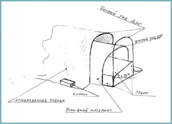как построить теплый парник для огурцов