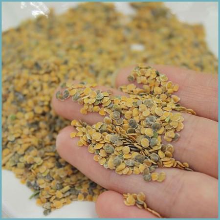 посадка семян маттиолы