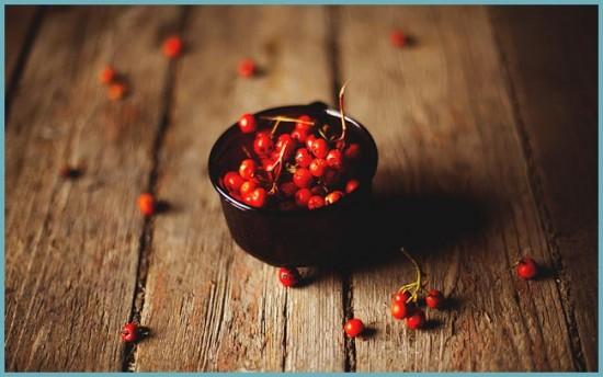 когда собирать ягоды рябины красной