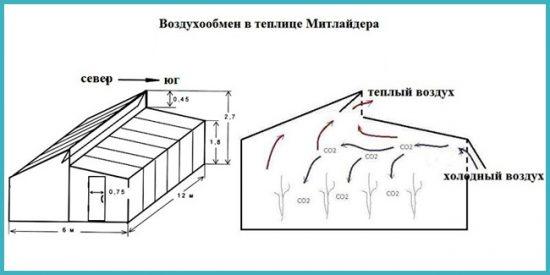 схема теплицы по митлайдеру