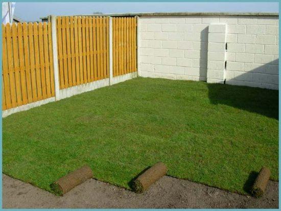Перед укладкой газона следует выровнять площадку и удалить сорняки
