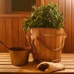 Антисептик для бани