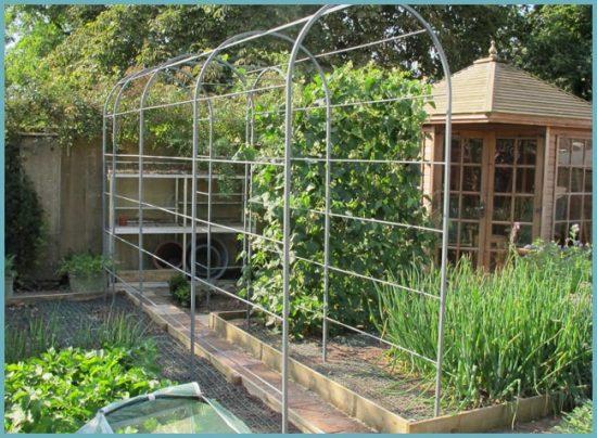 арка для растений