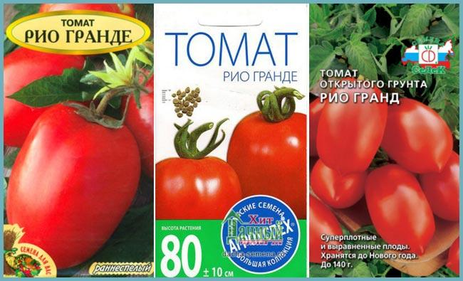 томат рио гранде отзывы и фото этих частей